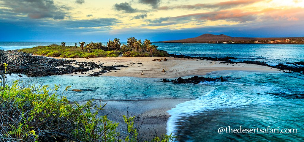 The-Galapagos-Islands