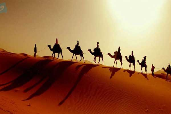 camel-ride-in-Abu-Dhabi