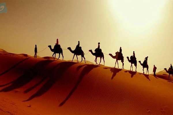 camel-ride-in-Abu-Dhabi