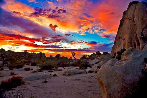us-desert-trip