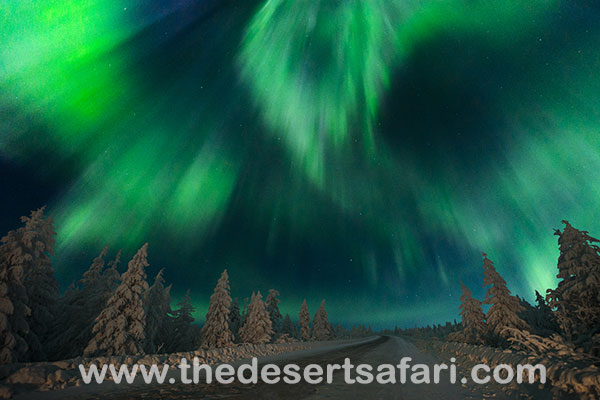 Northern lights vacation TDS