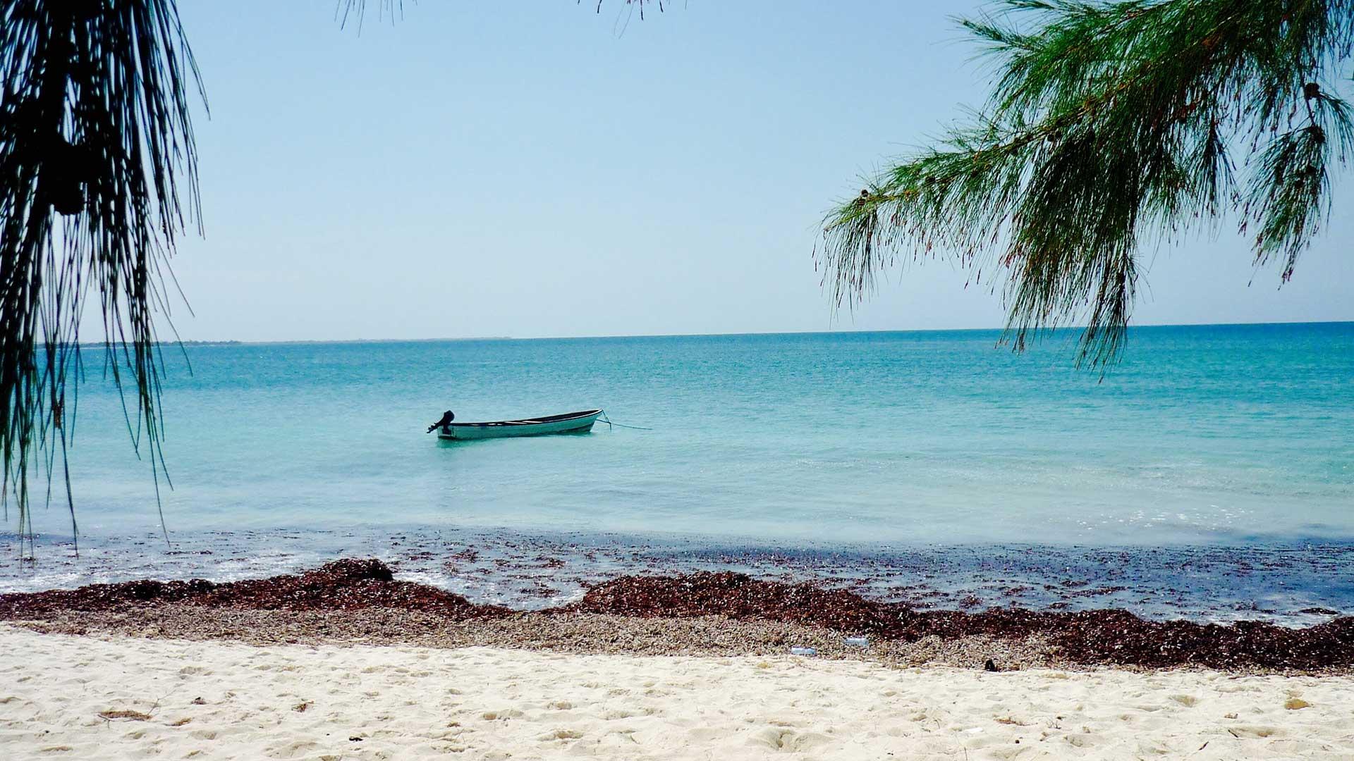Dar es Salaam TDS