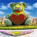 miracle garden rabbit