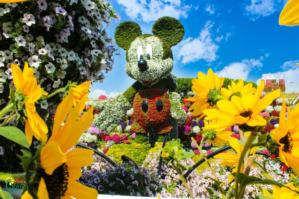 Miracle garden world's largest mickey mouse