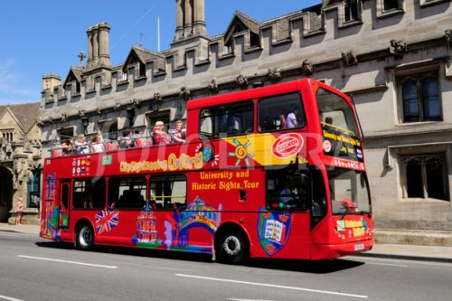 sightseeing bus for miracle garden