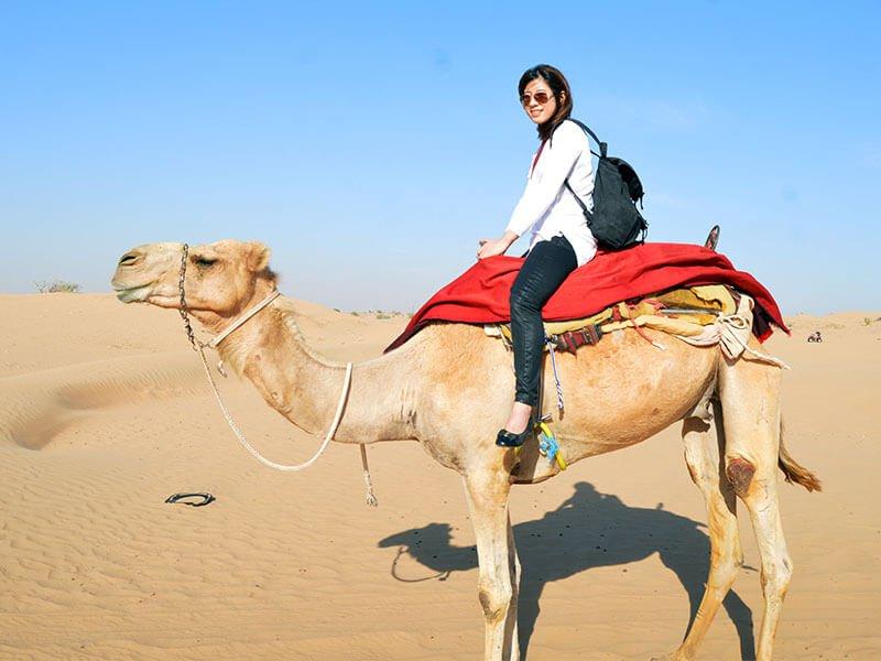 camel-ride