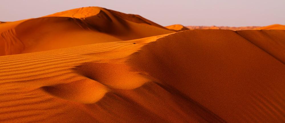 Red Dunes Dubai Desert