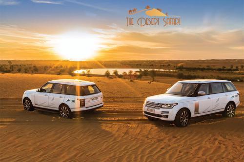 Range Rover in Desert