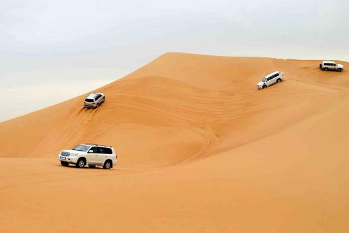 Dune Bashing in Morning Safari