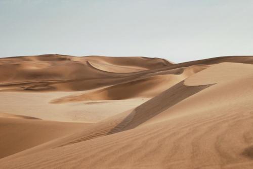 Lahbab Desert Safari