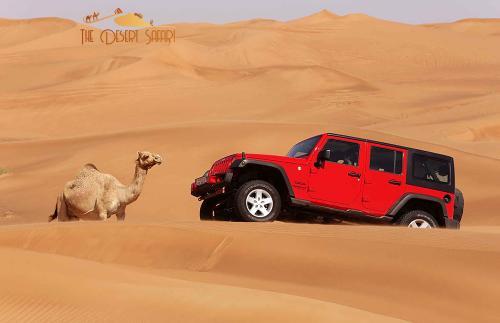 dune-bashing-in-Wrangler-Jeep