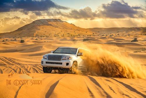 dune-bashing-in-land-cruiser