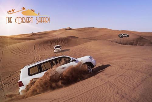 dunebashing-in-land-cruiser