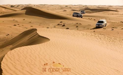 group-of-nissan-patrol-doing-dune-bashing